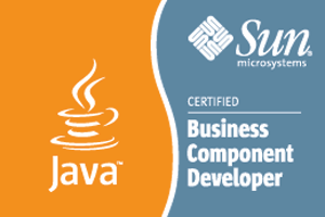 Sun Certified Business Component Programmer